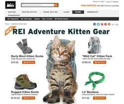 PaulaReyne.com REI Kitty ad 250x210