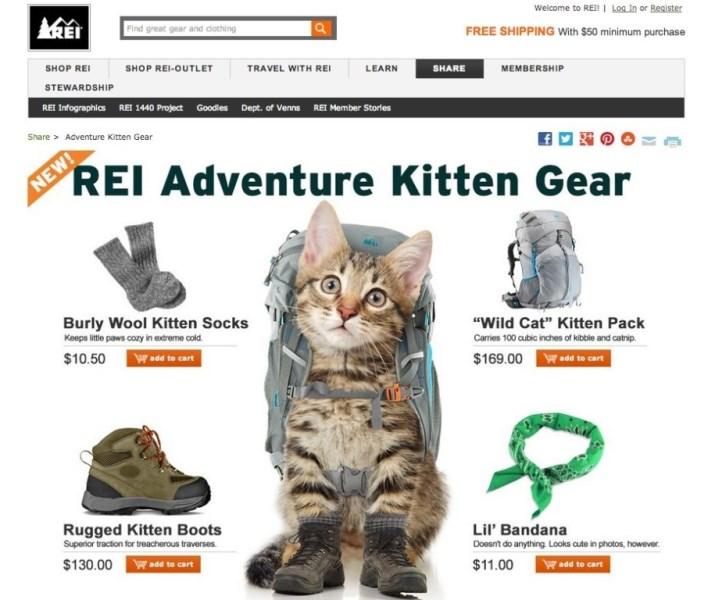 PaulaReyne.com REI Kitty ad. 715x600
