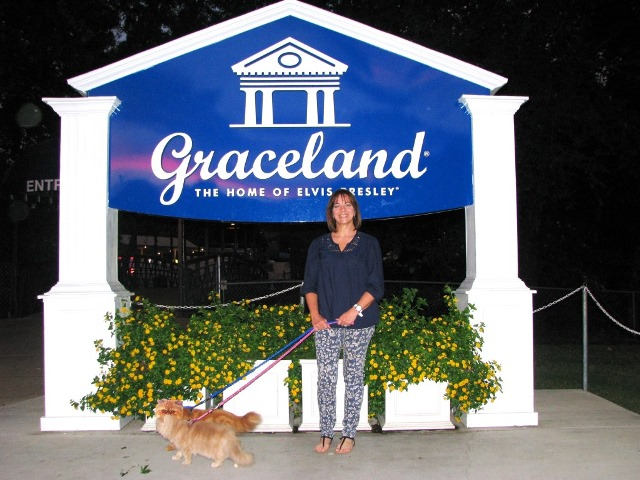 PaulaReyne.com Judah & Latte at Graceland 640x480